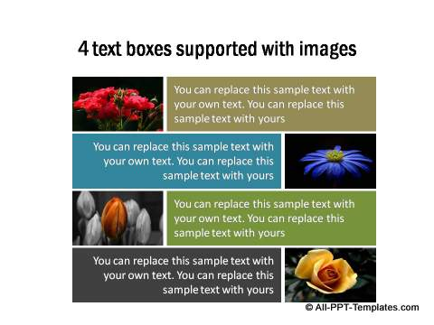 PowerPoint Image Layout 14