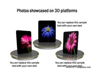 PowerPoint Picture Showcase 14