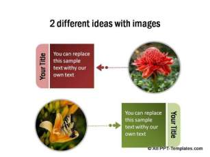 2 different ideas with images