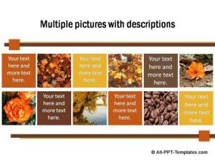 PowerPoint Image Layout  08