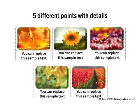 5 different points with images & details