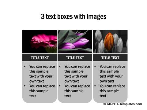 3 Text boxes with photos
