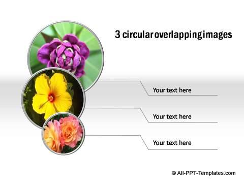 PowerPoint Photos as circles