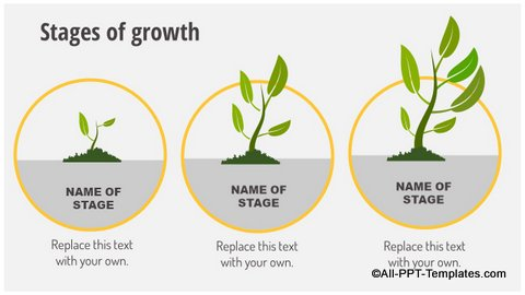 Growth Stages