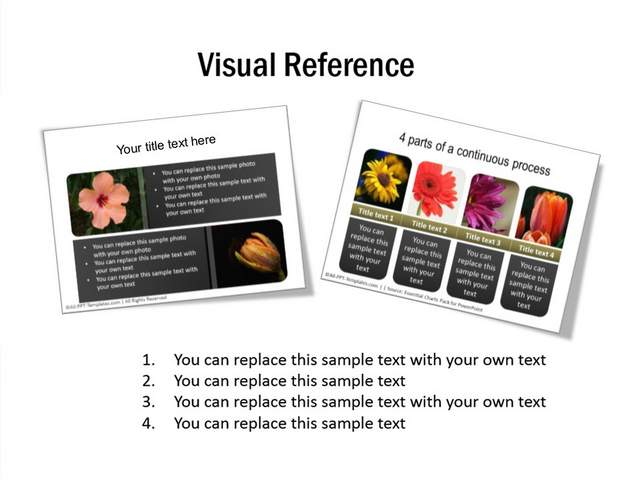 Visual Reference Slide