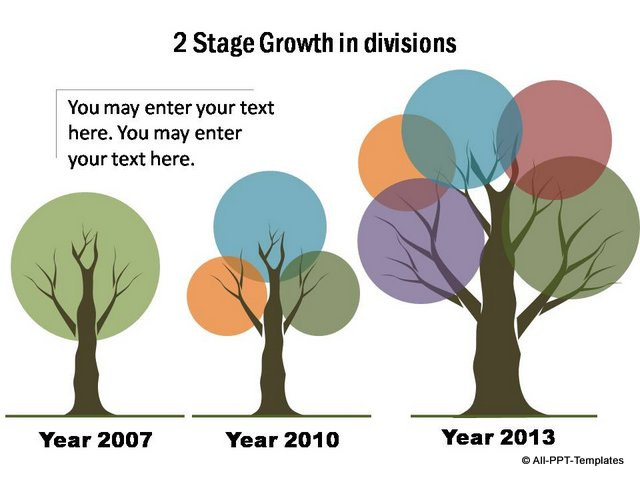 Branch Growth Timeline for 3 stages