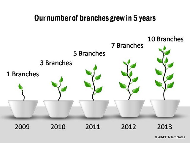 Branch growth shown in 5 stages
