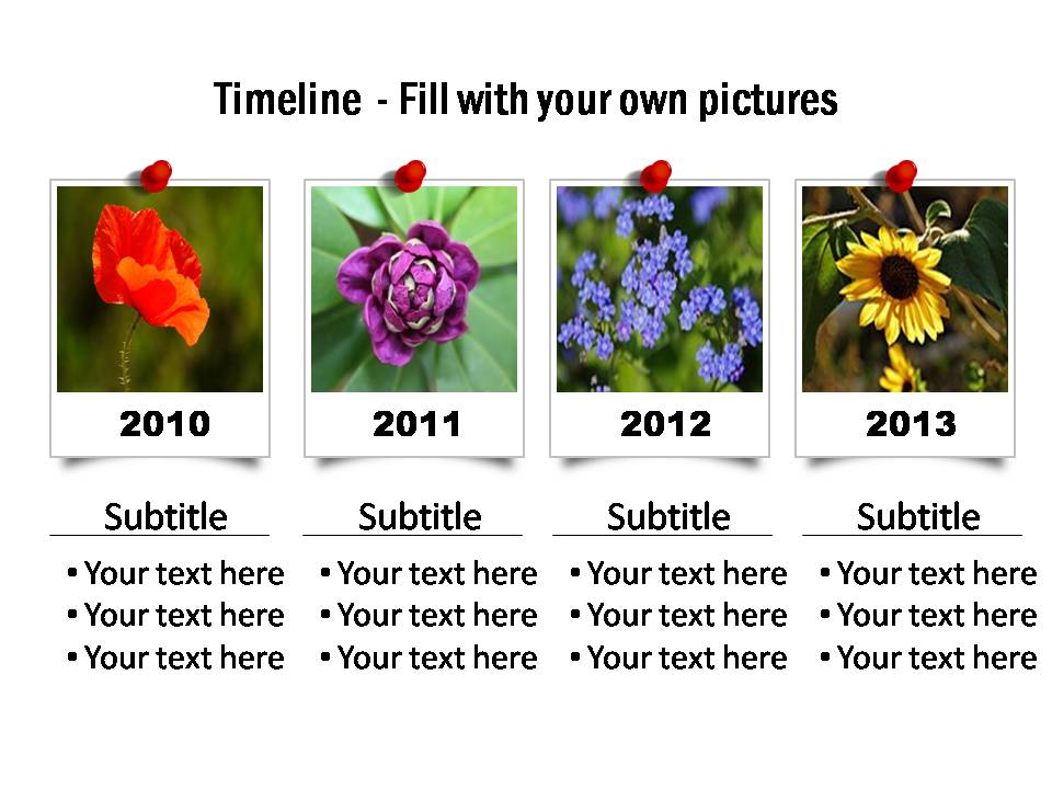 Timeline visual with framed photos, detailed year and text against each. The photos appear pinned to the slide.