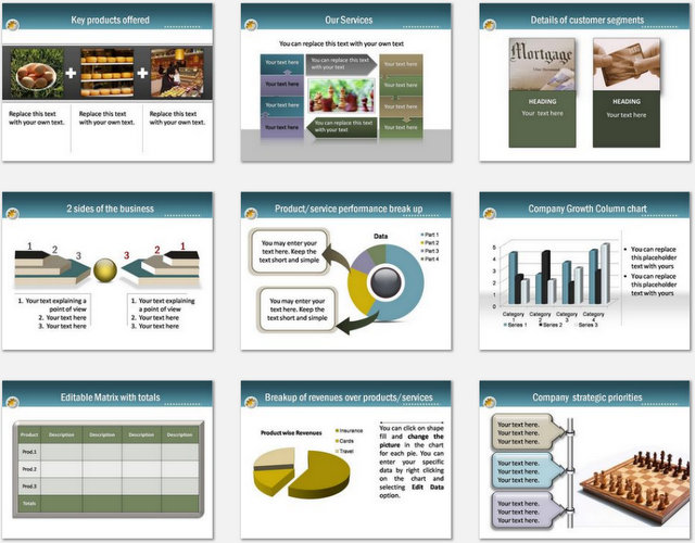 PowerPoint Blue Professional Intro Charts 2