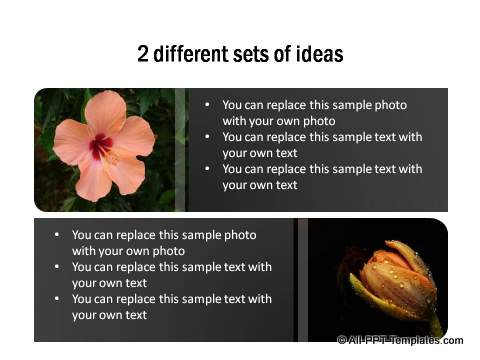 2 different sets of ideas