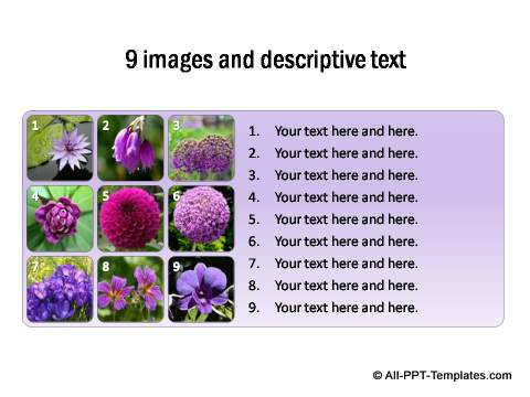 9 images thumbnails with descriptive text