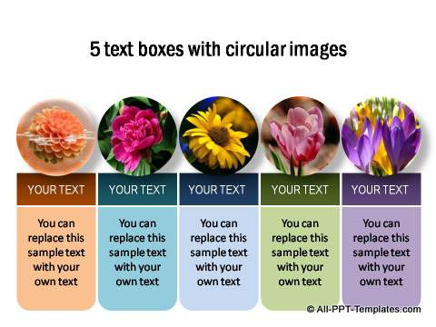 5 Text boxes with circular images