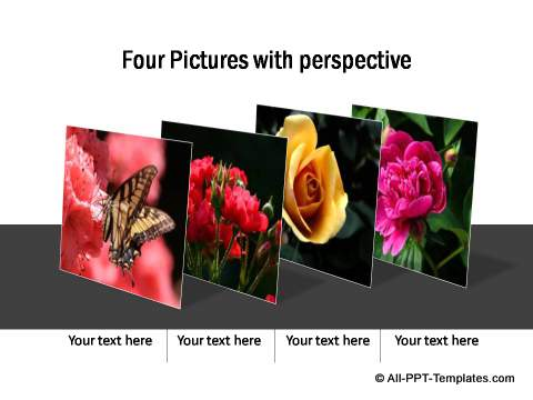 PowerPoint Picture Showcase 21