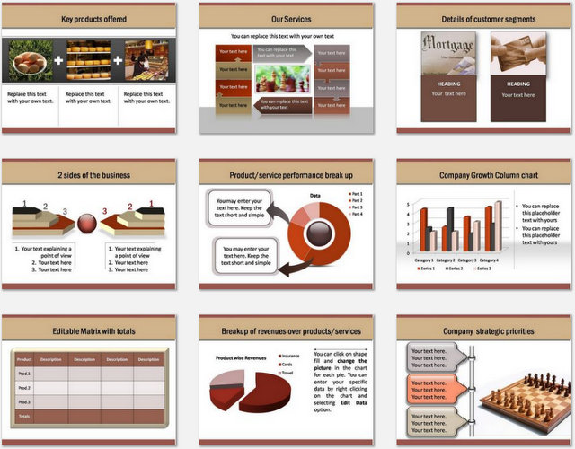 PowerPoint Professional Introduction Charts 2  Profile Templates
