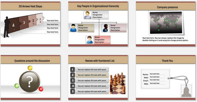 PowerPoint Professional Introduction Charts 3