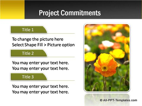 Pptx Project Blueprint Text and Image