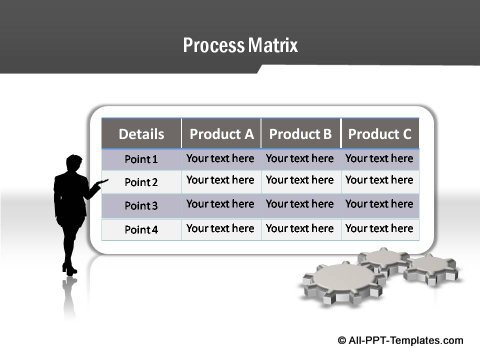 Project Report Process Matrix