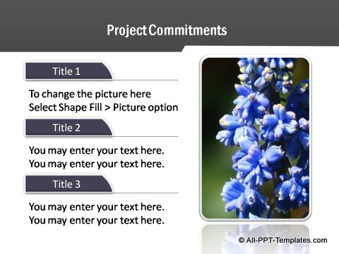 Project Report Text and Image