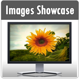 PowerPoint Image Showcase