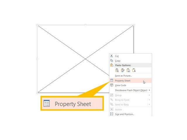 Edit Flash Property Sheet