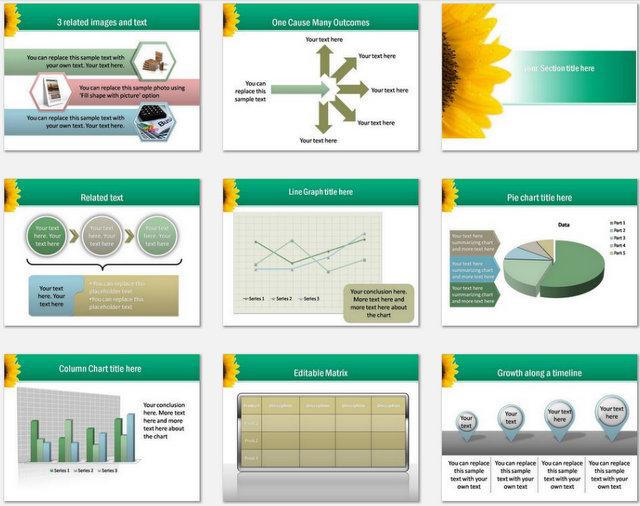 Bright Education Pptx Charts 2