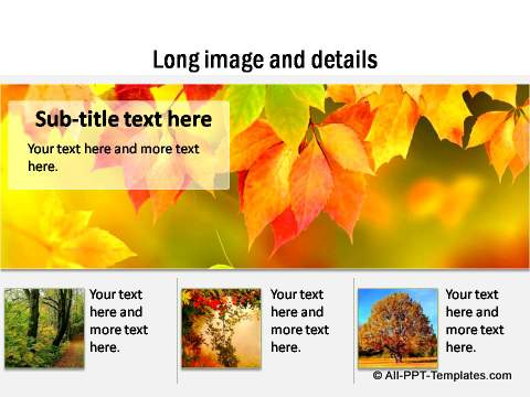 PowerPoint Image Layout  05