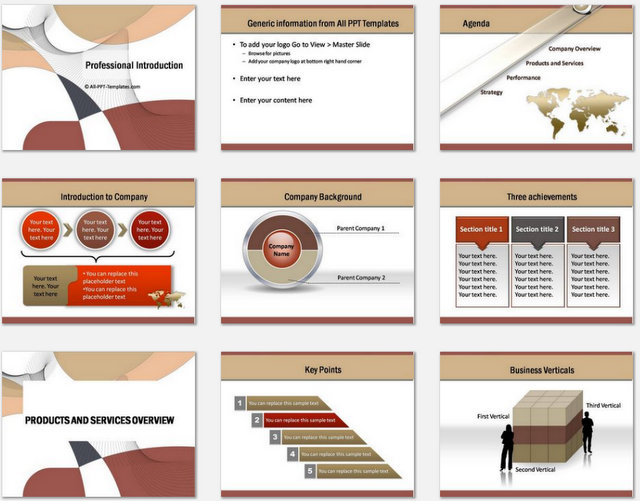 PowerPoint Professional Introduction Charts 1