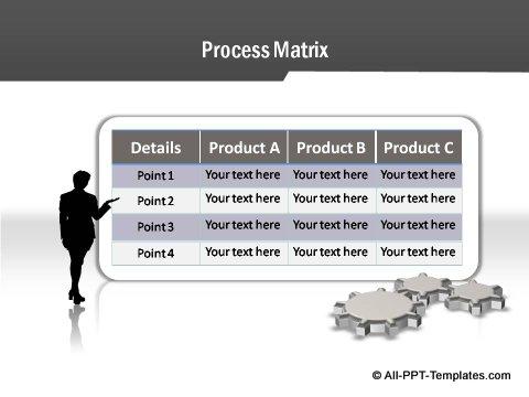 Project Report Process Matrix