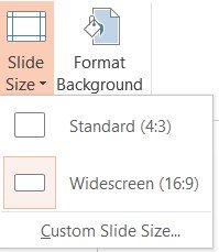 Widescreen and Standard Size Setting